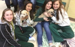 SADDTeams Up With Anderson Animal Shelter to Help Puppies Find their Fur-ever Homes