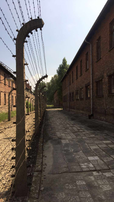 A few of the buildings at Auschwitz