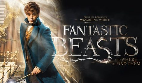 Eddie Redmayne as Newt Scamander, from 'Fantastic Beasts and Where to Find Them,' in theaters November 18