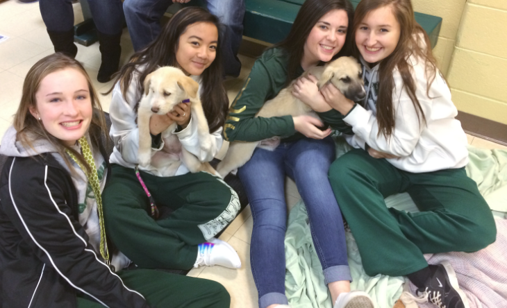 SADD students cuddling with the adorable puppies!