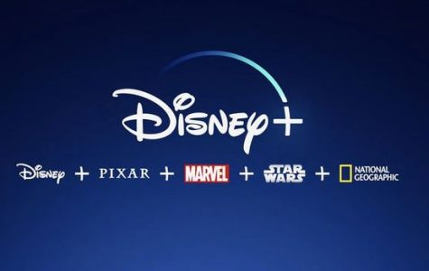 The new Netflix? Introducing Disney Plus!