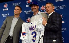 Cubs name new manager