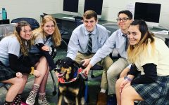 Therapy dog visits students before exams