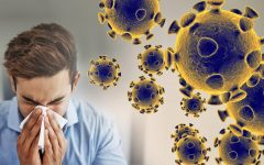 The coronavirus: what you need to know