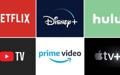 Most commonly used TV streaming services.