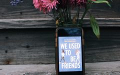 We Used to Be Friends Book Review